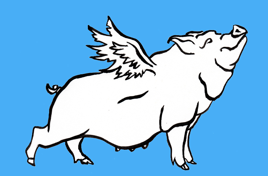 Line drawing of a pig with wings against a blue background